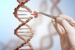 Конец биологической эволюции: к чему ведет редактирование генома