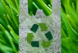Ученые из Российского экономического университета имени Г. В. Плеханова создали биоразлагаемые композиции на основе полиэтилена и различных растительных наполнителей
