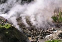 Даже в гидротермальных источниках могут жить организмы