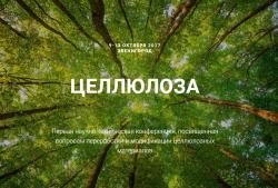 9 — 13 октября 2017 состоится Первая научно-техническая конференция «ЦЕЛЛЮЛОЗА 2017»