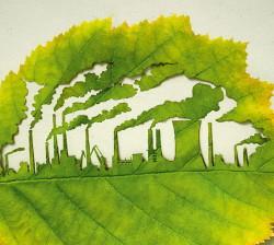 Экологичное производство становится трендом