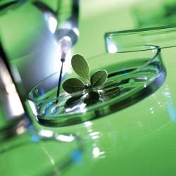 В КрасГАУ откроется инновационная лаборатория по интегрированной защите растений