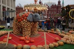 На корм животным: композициям фестиваля «Золотая осень» нашли применение