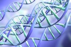 Конференция «Геномное редактирование и его приложения»