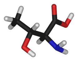 Треонин необходим для рационов с низким содержанием сырого белка — исследование