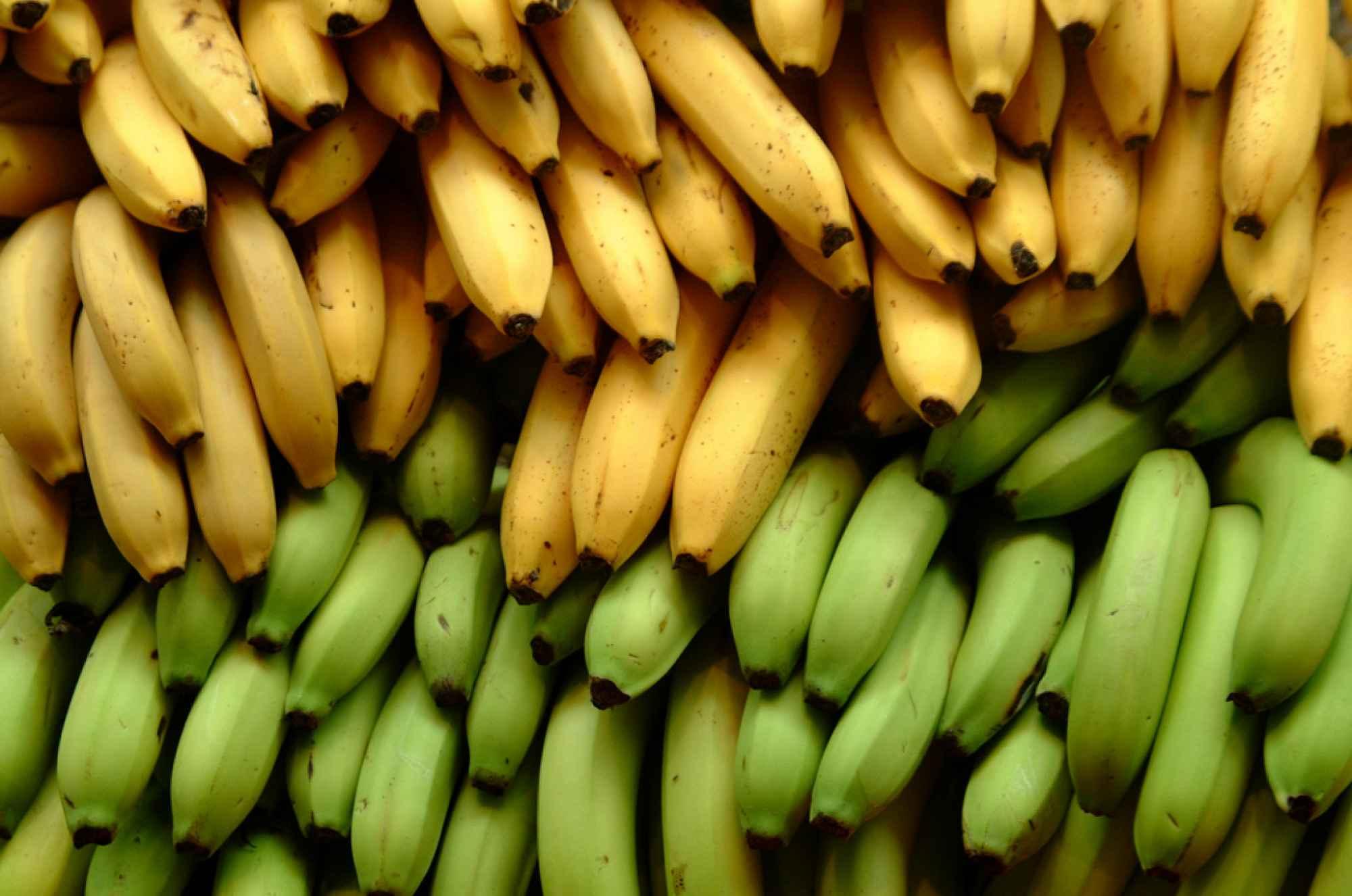 bananas_PNG5348