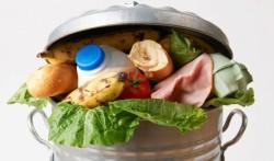 Full Cycle Bioplastics разработала процесс создания пищевой упаковки из отходов