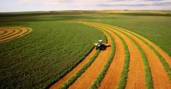 Сельскохозяйственный прогноз ОЭСР-ФАО на 2018–2027 годы
