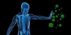 Microsoft расшифрует иммунную систему человека