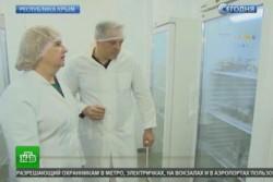 Крымские биологи вывели невосприимчивые к вирусам морозостойкие растения