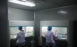 Путин поручил организовать в России масштабные исследования генома