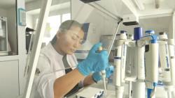 Агро-био-технологический хаб создадут в Костанайской области