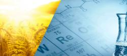 Нефтехимия: в поисках зеленых технологий