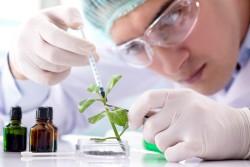 Подготовлена программа повышения квалификации для биотехнологов
