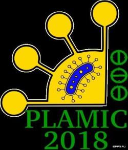 13-17 июня 2018 г, Уфа ⇒ Международная научная конференция PLAMIC2018 «Растения и микроорганизмы: биотехнология будущего»