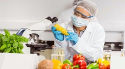 Эксперт: переработка 20 млн тонн зерна позволит заместить 100% продукции биотехнологий