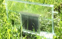Искусственный фотосинтез воспользуется половиной энергии Солнца