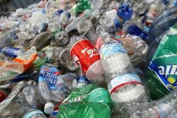 Ученые случайно нашли бактерию, разлагающую пластик за несколько дней