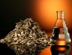 Российские ученые предлагают кормить животных спиртовыми отходами