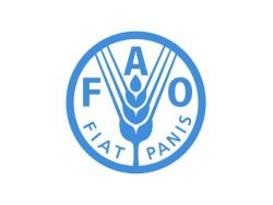 В России впервые проходит Генеральная ассамблея Всемирной фермерской организации