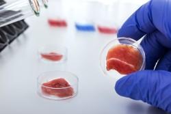 Инвестор Виталий Голомб — об искусственном мясе и том, почему не нужно получать патенты