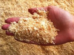 Российские ученые преобразуют древесные опилки в ценные органические соединения