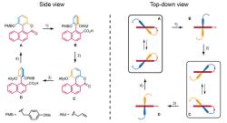 Создана синтетическая молекула высокой эффективности против супербактерий