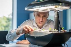 Биотехнологии смогут обогнать по инвестиционной привлекательности IT
