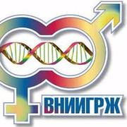 Ученые ВНИИГРЖ редактируют геном кур, чтобы вывести специальную породу