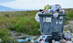 Ученые США разработали биоматериал, который сможет заменить пластик