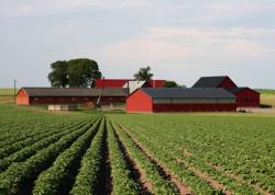 Участники Генеральной ассамблеи Всемирной фермерской организации посетили хозяйства Московской области