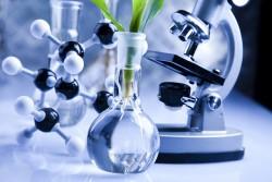 Новый центр для научных экспериментов в сельском хозяйстве создадут в Астане