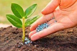 В России биоСЗР могут исключить из числа пестицидов и агрохимикатов