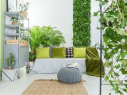 «Умные растения» вскоре смогут сообщать нам о плесени и радоне в доме