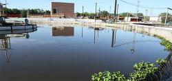 Биоочистка как тренд. На Новокуйбышевском НПЗ Роснефти запущена инновационная экологичная технология водоочистки