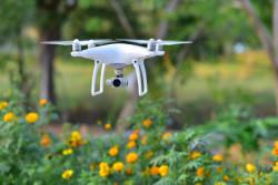 Помощь пчелам в опылении культур дронами от Dropcopter