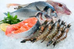 Прибыль рыбного хозяйства ЕС удвоилась