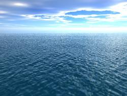 РАН и Росрыболовство займутся научными исследованиями биоресурсов Мирового океана