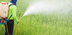 Эксперты требуют запретить пестициды в ЕС