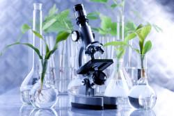 РАН представит проект программы фундаментальных исследований на общем собрании 23 апреля