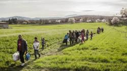 Политика не должна препятствовать миграции, а максимизировать ее потенциал и минимизировать негативные последствия