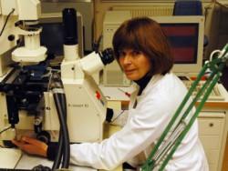 Биологи определили, какие гены помогают растениям справляться с дефицитом кислорода