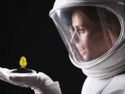 Разбить садик в космосе: ученые выясняют, как растения адаптируются к космической среде