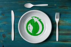 Разработана новая технология создания биопластиков из экологически чистых материалов
