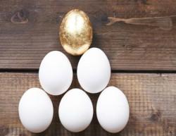 Биотехнологи нашли способ получения лекарства от рака из куриных яиц