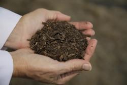 В США могут разрешить использовать удобрения из человеческих останков