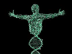 В России законодательно защитят генетические данные