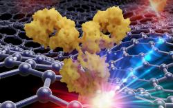 Исследователи разработали сразу 13 биолюминесцентных сенсоров