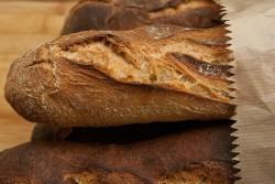 В Кемерове запустили инновационную переработку хлебных отходов в кормовые добавки