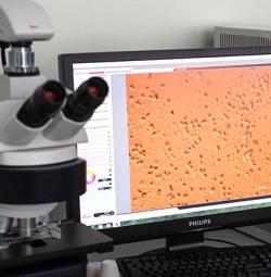 Заказной инстинкт: ученые придумали, как обмануть рецепторы патогенных бактерий